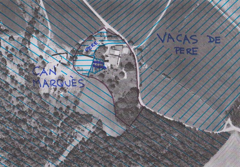 Can Pou - Mapa vecinos