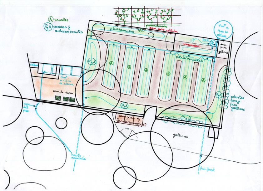 Diseño general del huerto principal. Diseño permacultura Can Pou